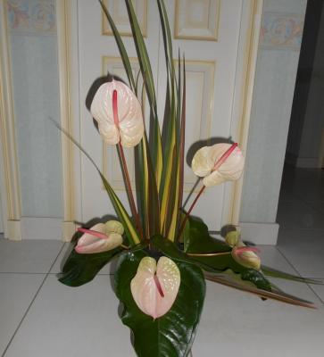 Createndances artfloral 1